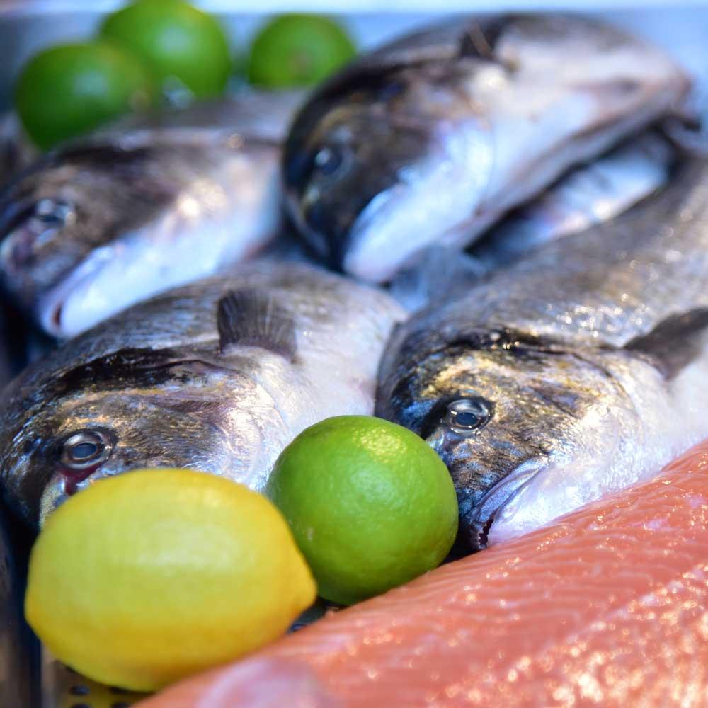 One-Kitchen-Kochschule-Kochkurs-Fisch-thumb